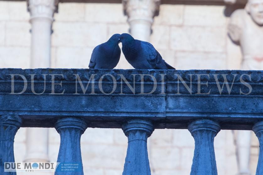 Duomo_Spoleto-17