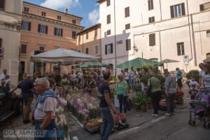 Spoleto_in_fiore_2017-16