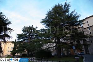 Piazza_della_Signoria_Spoleto-2